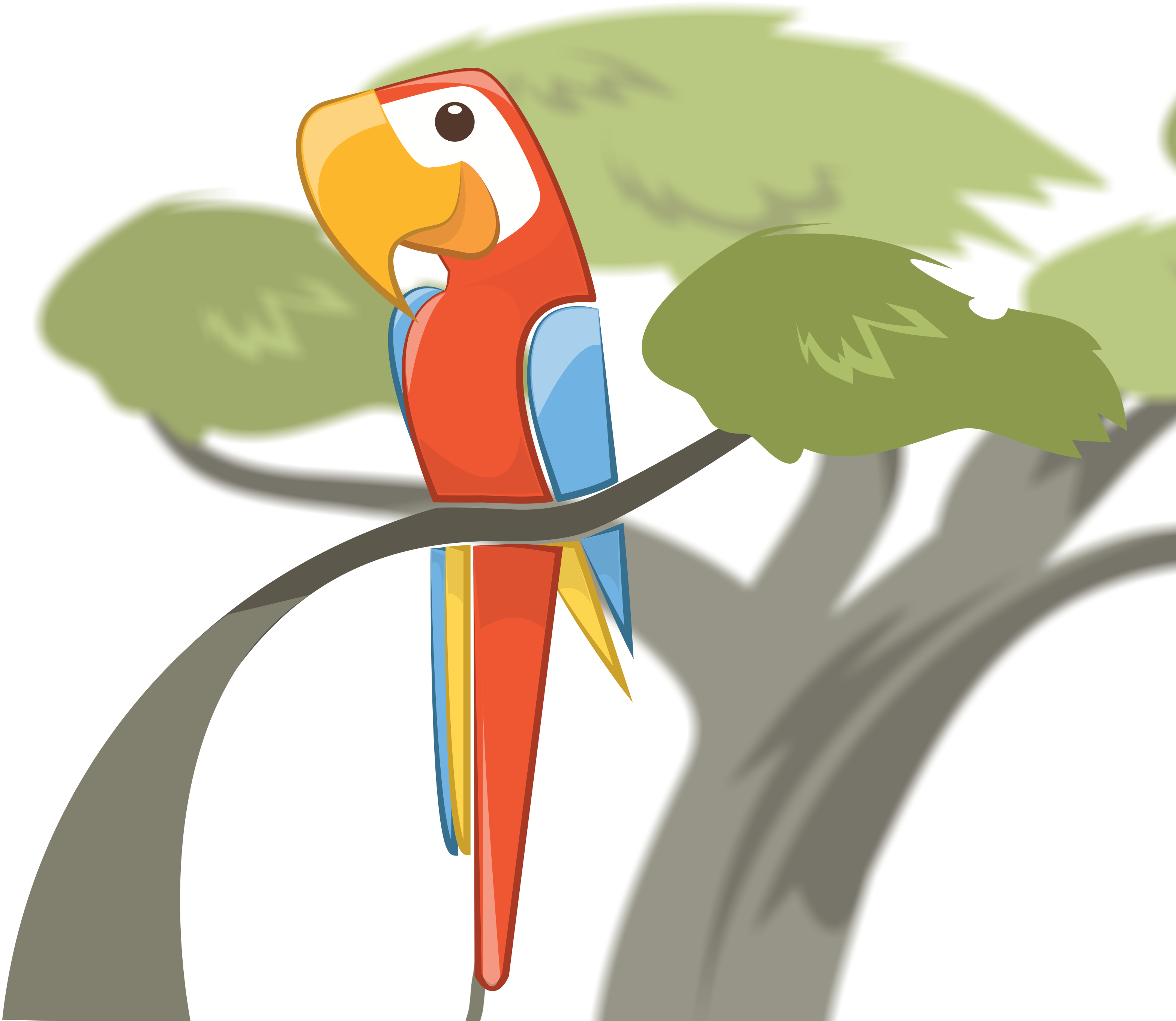 Macaw Software Logo